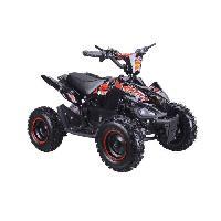 Vehicule BIKEROAD Quad Electrique Raptor 500W Noir avec LED - Quad enfant Generique