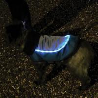 Vetement - Accessoire ROSEWOOD Veste LED 15 Night-Bright - Pour chien
