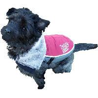 Vetement - Accessoire ROSEWOOD Veste a LED de luxe 15 - Pour chien