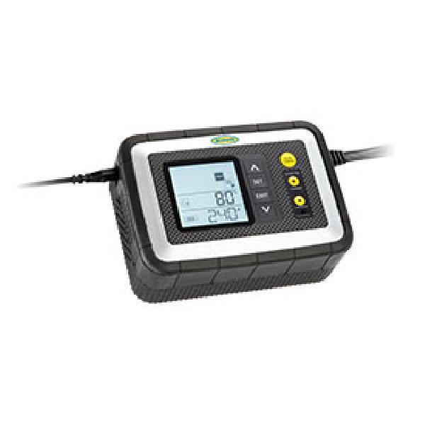 Chargeur de batterie automatique RING 12A avec analyseur