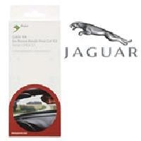 faisceaux-jaguar